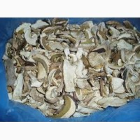 Белый гриб засушеный