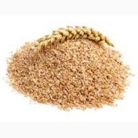 Закупаем отруби пшеничные гранулированные