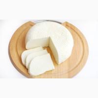 ООО Харьковский молочный завод продаем сыр Адыгейский