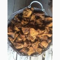 Продам чагу березы качественную без кори 160 опт 130грн.кг