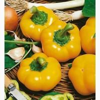 Продам семена Перец Топбой (ратунда)