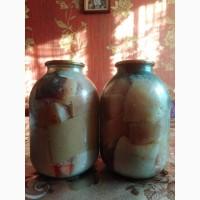 Продам домашнє сало солене в маринаді