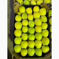 Продам Польские яблоки, с доставкой на Украину, любых сортов в любом количестве