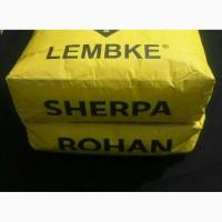 SHERPA (Шерпа) - гібрид ріпаку Лембке NPZ