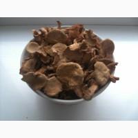 Грибы лисички, сушеные, недорого