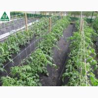 Продам агроволокно Plant-Protex черное, мульчирующее, для клубники плотность 50 г/м2