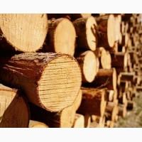 Продам сухі дрова з хвойних порід деревини