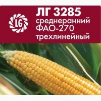 Силосный гибрид кукурузы Limagrain ЛГ 3285 среднеспелый ФАО-270 трехлинейный