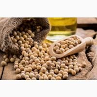 Соя ГМО и не ГМО куплю по територии Украины