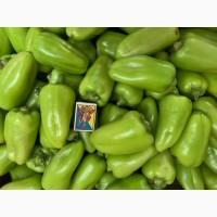 Продам перец зелёный оптом