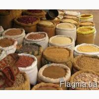 Продам крупи від виробника: пшенична; ячмінна; перлова; кукурудзяна