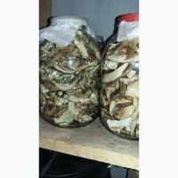 Сушеные белые грибы, 2021 Херсонщина.отличного качества