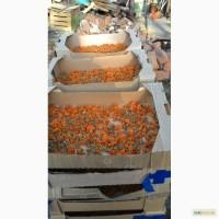 Календула цвет, оранжевая махровая опт