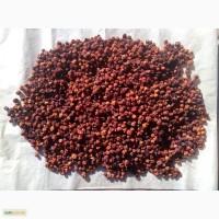 Рябина, горобина червона, сушена упаковка від 1 кг.2016 року