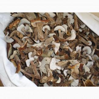 Продам сухие белые грибы