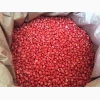 Продам насіння Кукурудзи, сорт Дніпровська