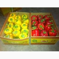 Перец и овощи из Испании