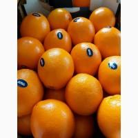Premium Orange