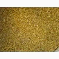 Закупка зерна пшеницы, кукурузы, подсолнечника, зернобобовых, проса, льна