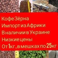 Кофе сырой жареный Оптовые цены Африка зёрна