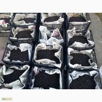 Продам смородина чорна (ягода)