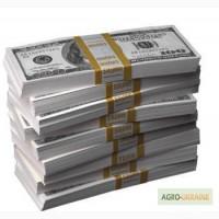 Кредит под залог недвижимости за 1 день без справок о доходах