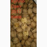 Покупка грецких орехов