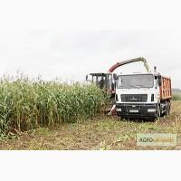 Уборка сенажа сена соломы уборка кукурузы на силос по Украине