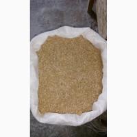 Реалізовуємо висівки (отруби) пшеничні