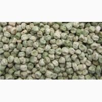 Продам насіння Гороху, сорт Сахарний