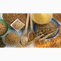 Продам борошно, манка, крупи : перлова, ячмінна, пшенична 3, 4фр, Артек Полтавський