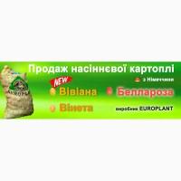 Насіннева картопля Еліта виробник Европлант Німеччина Беллароза, Вінета, Вівіана, Анушка