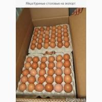 Экспорт яйца свежие С0, С1 и яичный порошок.Отгрузка на прямую с завода изготовителя