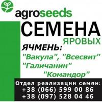 Семена от производителя. Ячмень. Вакула, Галичанин, Адапт, Командор. Урожай 2020, док-ты