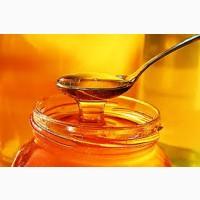Купимо мед оптом дорого від 300 кг Кіровоградська обл