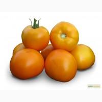 Семена томата KS 17 F1 Китано