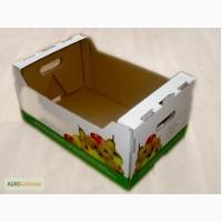 Упаковка для яблок, тара для хранения яблок