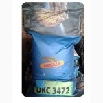 Семена кукурузы Monsanto ( Dekalb ) ДКС-4014