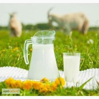 Козье молоко, доставка Киев