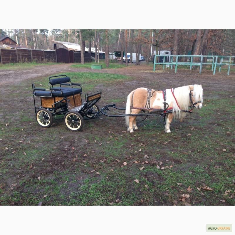 картинки тележка для пони проводится спокойном