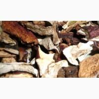 Польські гриби сушений