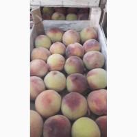 Персик редхевеня и молдова из холодильник