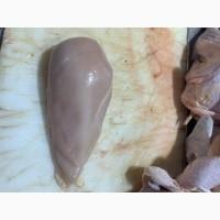 Продам Куриное филе