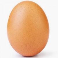 Продаем яйцо кур