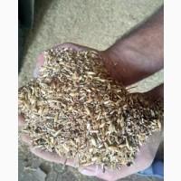 Зерноотходы зерновые. Отходы масличные. Бобовые зерноотходы