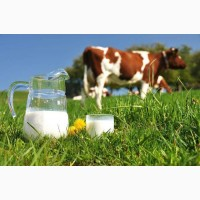 Молоко сухое цельное 26%