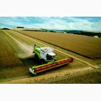 Услуги уборки урожая комбайнами Claas Lexion