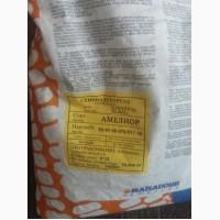 Продам залишкі насіння кукурудзи Амеліор