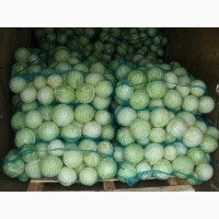 Продам капусту с отправкой по Украине