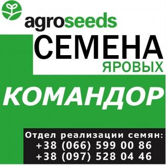 Элитные семена. Ячмень Командор. Семена от производителя